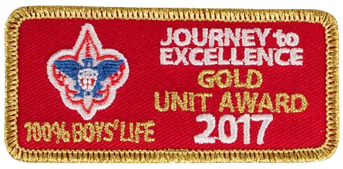 Journey to Excellence Gold 100% Boys' Life 2017